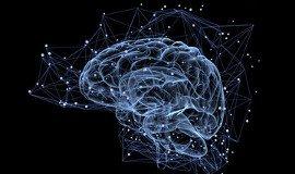 team building training emotional intelligence